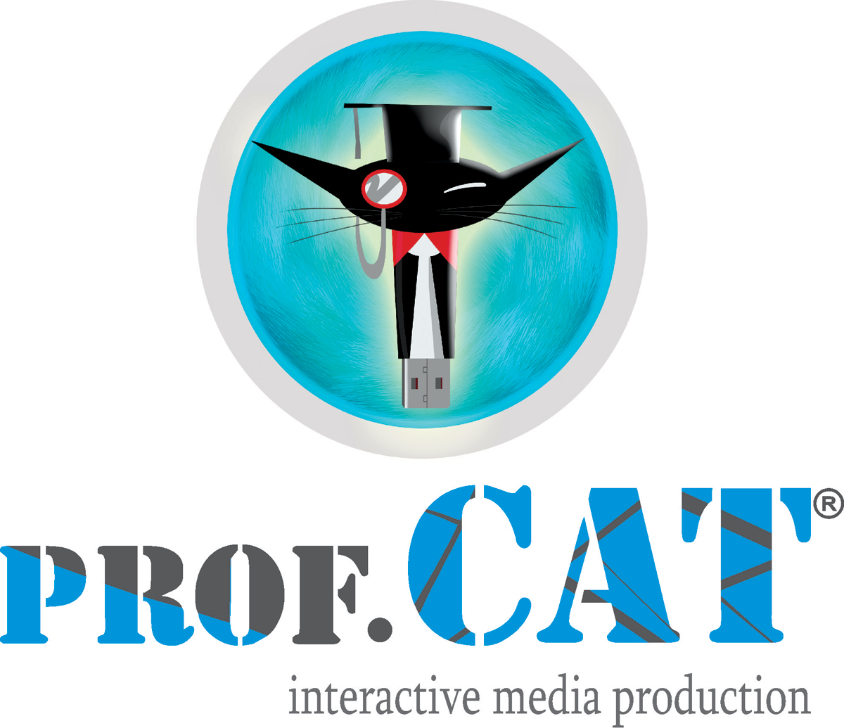 PROFCAT Interactive Media_Resim